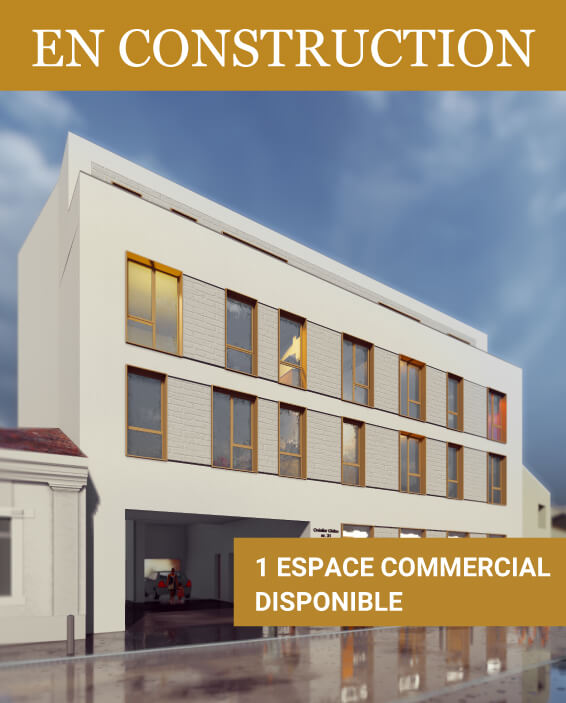 Vila-Homepage-FR