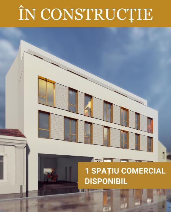 Vila-Homepage-RO